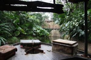 durch das tropische Gondwana - mit Ausschnitt auf den Treetop-Walk.