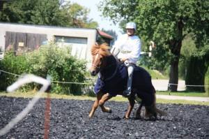 2014 Juli Ritterturnier Gottenau 119kl