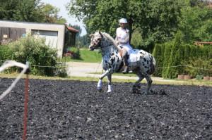 2014 Juli Ritterturnier Gottenau 125kl