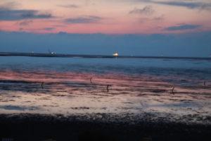Nein, das ist nicht das Meer - der Abendhimmel spiegelt sich im Watt!